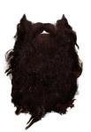 P1 Beard